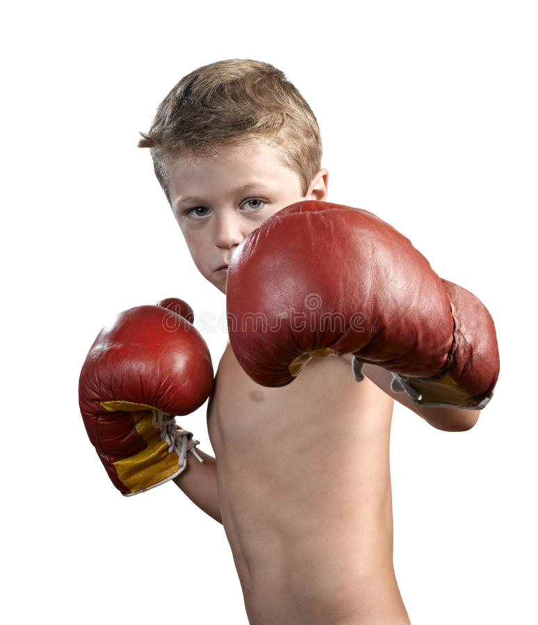 Cute little boy with boxing gloves royalty free stock photos