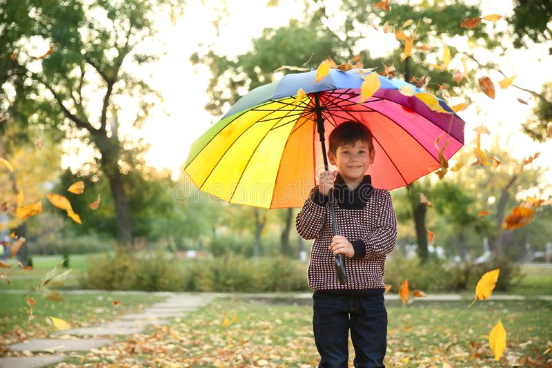 Cute little boy with colorful umbrella in autumn park stock images