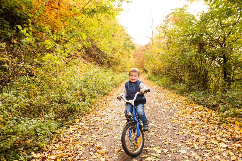 Cute little boy cycling in sunny autumn park. stock photo
