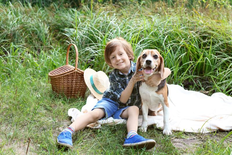 Cute little boy with dog resting in green park stock photography