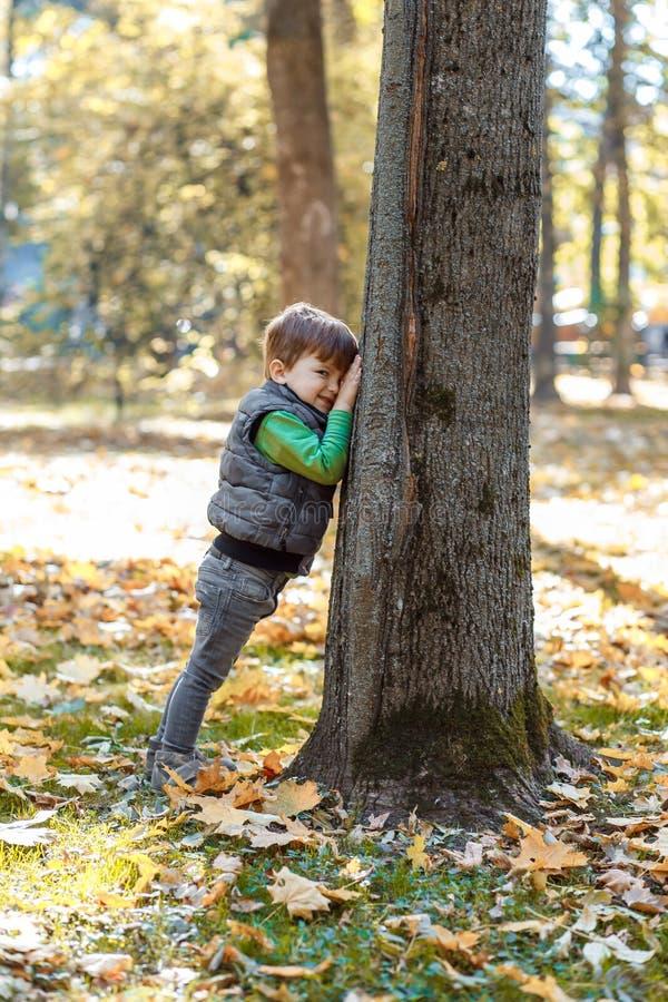A cute little boy having fun in the park in autumn royalty free stock photos