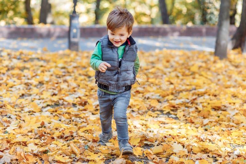A cute little boy having fun in the park in autumn stock photo