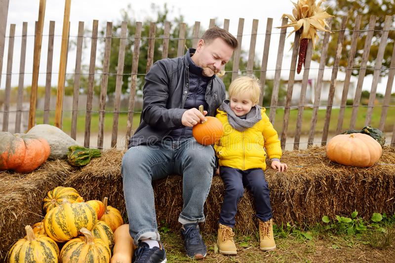 Cute little boy with his father choosing organic pumpkin on agricultural farm at autumn stock photography