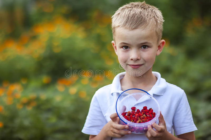 Cute little boy holding bowl with strawberries royalty free stock image
