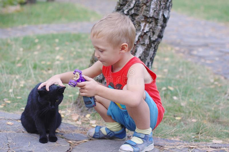 Cute little boy playing with a cat outdoors. In the grass royalty free stock photo