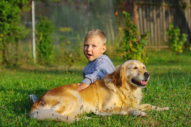Little boy playing with golden retriever dog royalty free stock photos
