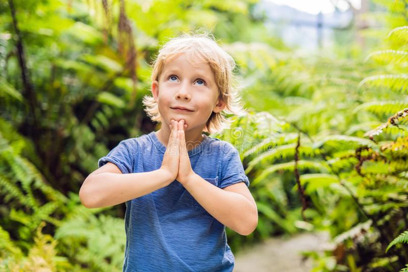 Cute little boy praying in the woods stock photo