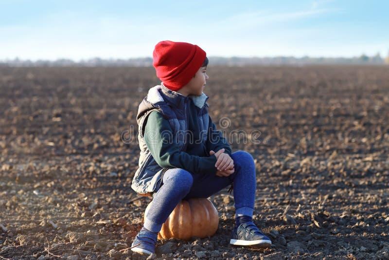 Cute little boy sitting on pumpkin in autumn field stock photos