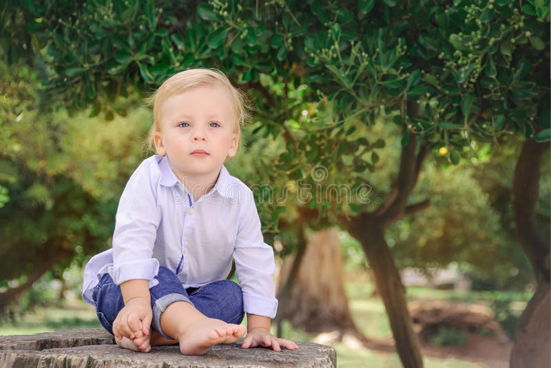 Cute little boy sitting on a stump. Expressing Positivity Concept. Happy childhood . royalty free stock photos