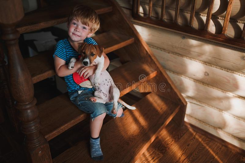 Cute little boy sitting on wooden stairs and keeps the hands beautiful puppy breed Jack Russell Terrier. Sunny day. royalty free stock photography