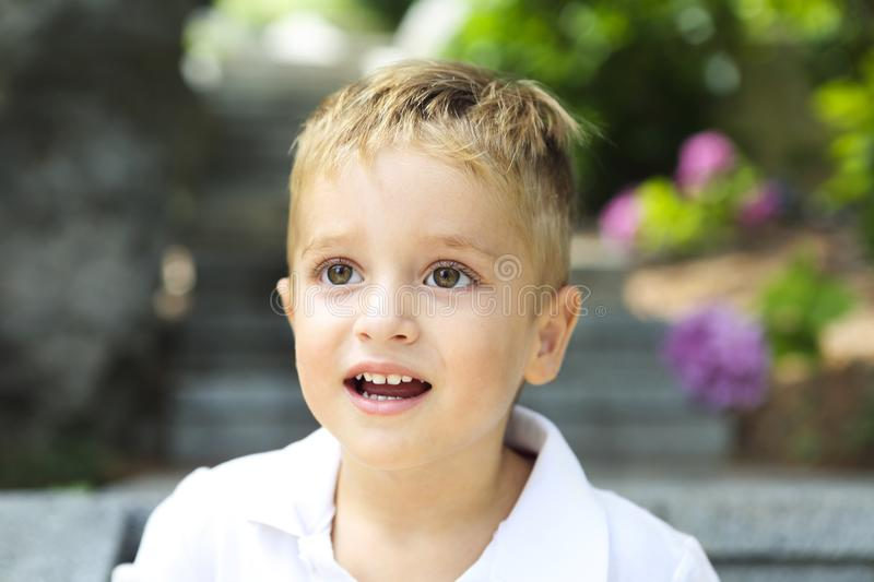 Cute little boy in the summer park royalty free stock photos