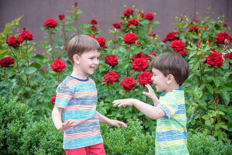 garden roses ile ilgili görsel sonucu