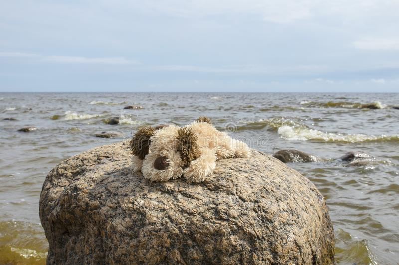 Cute little brown with white plush doggie plush toys sitting on a big granite stone outdoors against the blue sea and blue sky royalty free stock image