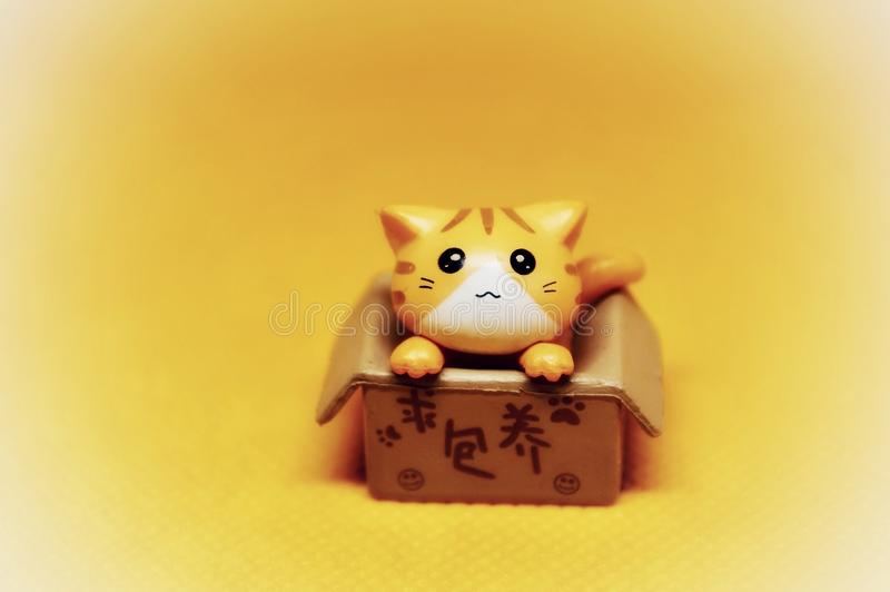 Little cut plastic cat in an open box royalty free stock images
