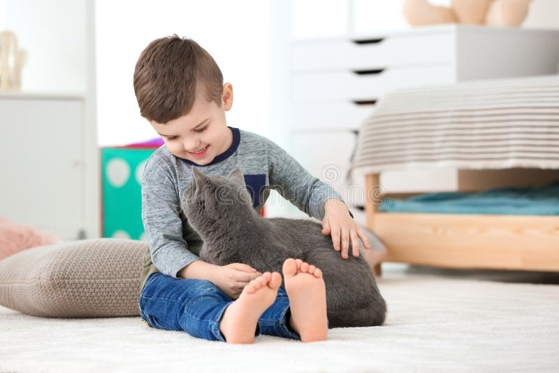 Cute little child with cat. At home stock images