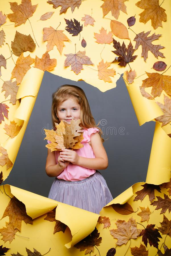 Cute little child are getting ready for autumn. Funny face. Pretty little girl in autumn playing with leaves on autumn stock images