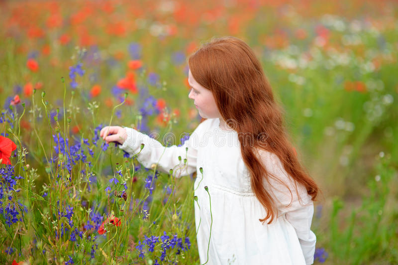 Cute little child girl with red head holding a flower outdoors i stock photo