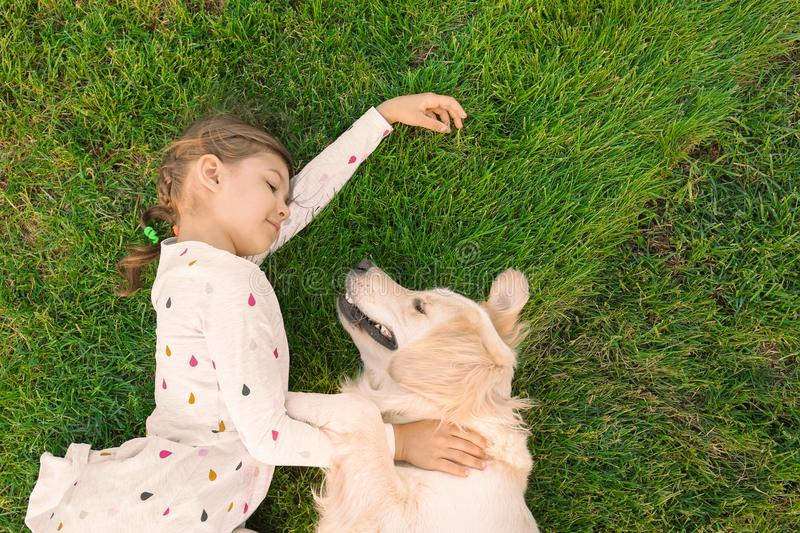 Cute little child with pet on green grass, top view. Cute little child with Golden Retriever dog on green grass, top view. Pet care stock photography
