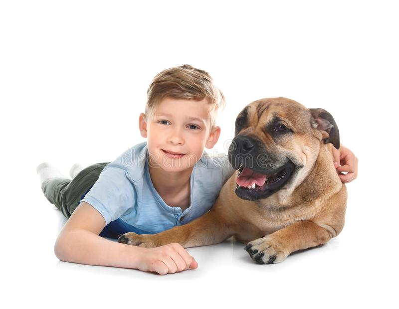 Cute little child with his dog. On white background royalty free stock photography