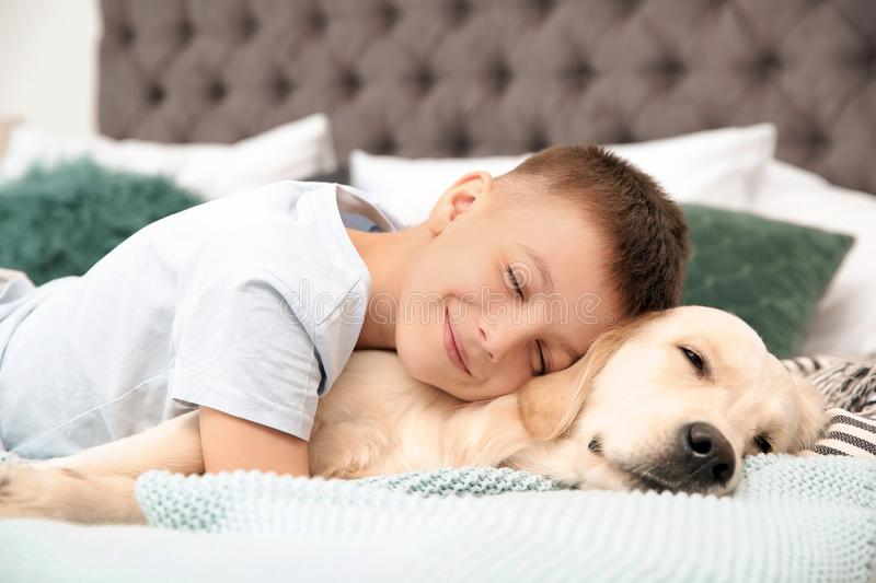 Cute little child with his pet on bed royalty free stock image