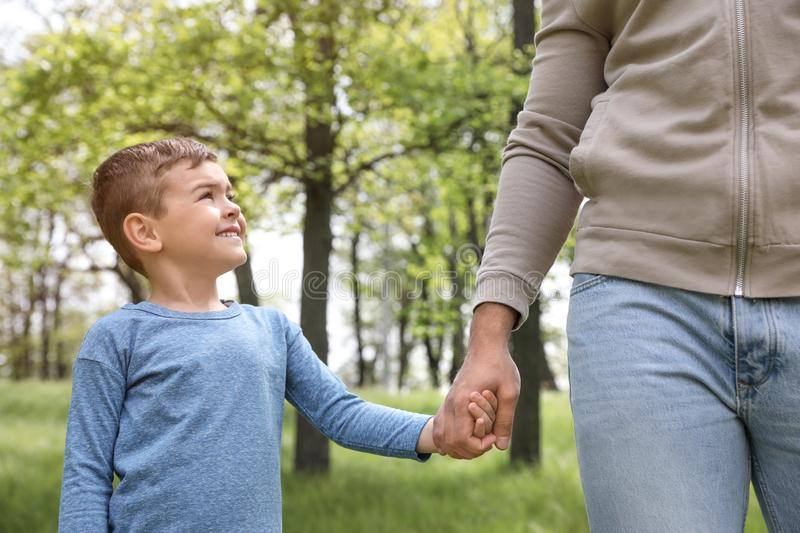 Cute little child holding hands with his father in park stock photography