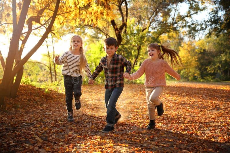 Cute little children having fun in autumn park stock photo