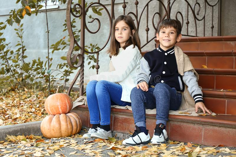 Cute little children with pumpkins sitting on steps outdoors royalty free stock photography