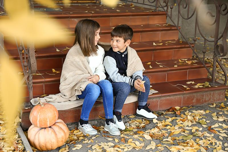 Cute little children with pumpkins sitting on steps outdoors royalty free stock photos