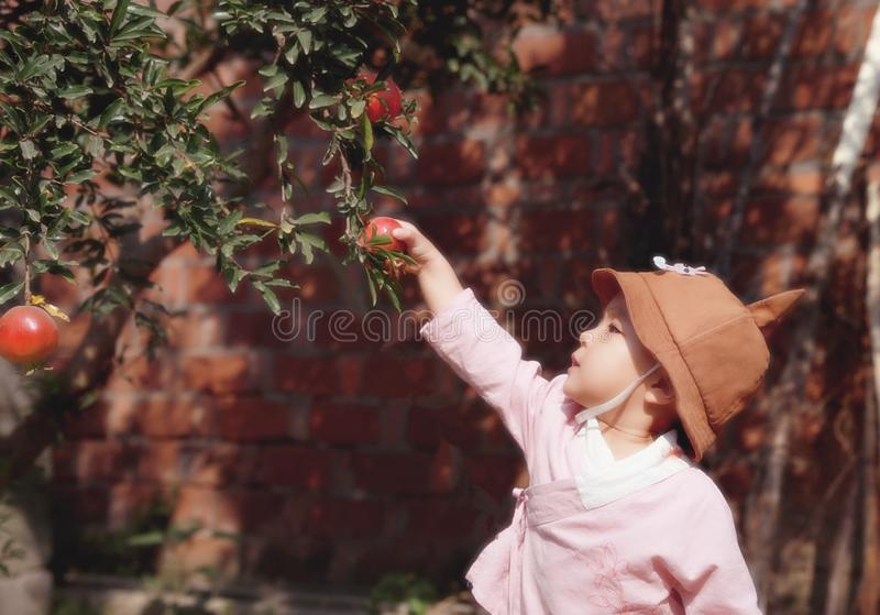 Lovely chinese Baby girl With a hat pick Pomegranate royalty free stock image