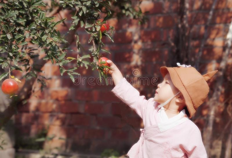 Lovely chinese Baby girl With a hat pick Pomegranate stock photo