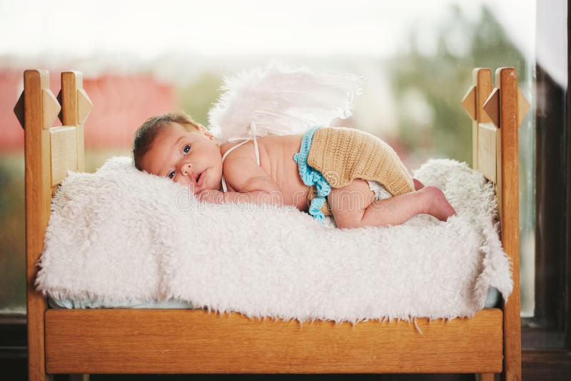 Cute little cupid with wings royalty free stock image