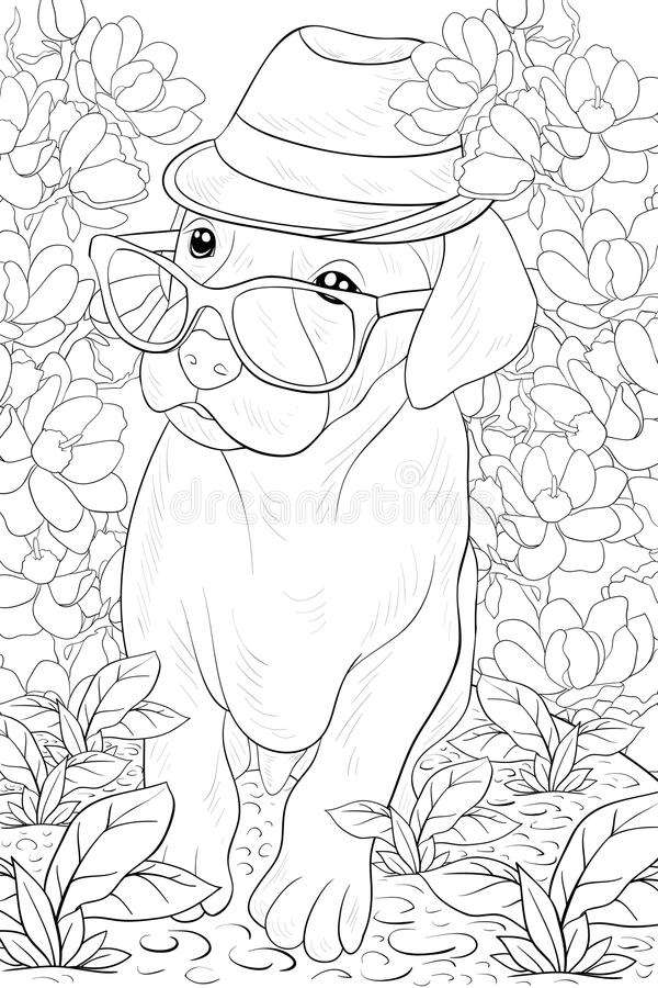 Adult coloring page a cute little dog with glasses and hat for relaxing.Line art style illustration. A cute little dog wearing a hat and glasses on the floral royalty free illustration