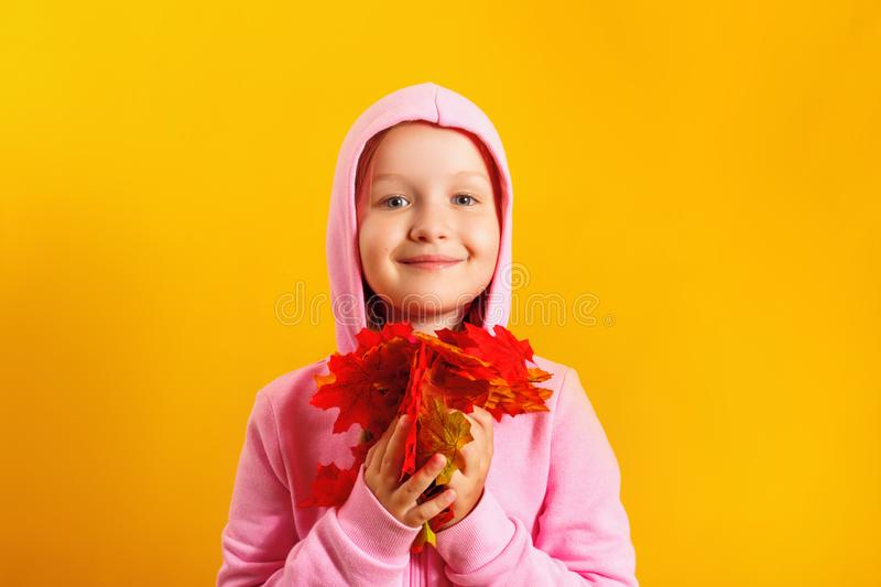Cute little girl with an armful of autumn maple leaves on a yellow background stock photos