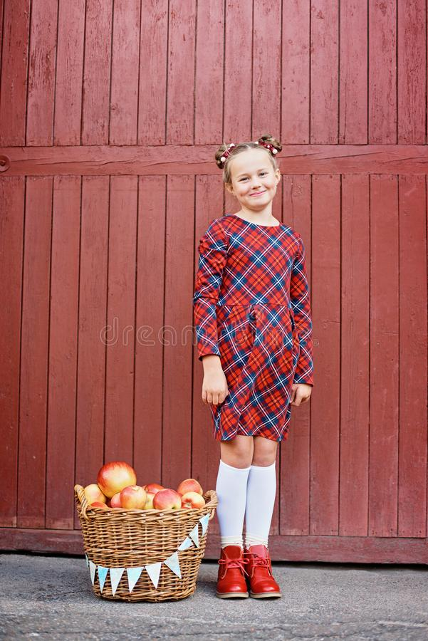 Cute little girl with a basket of red apples on wood background stock photo