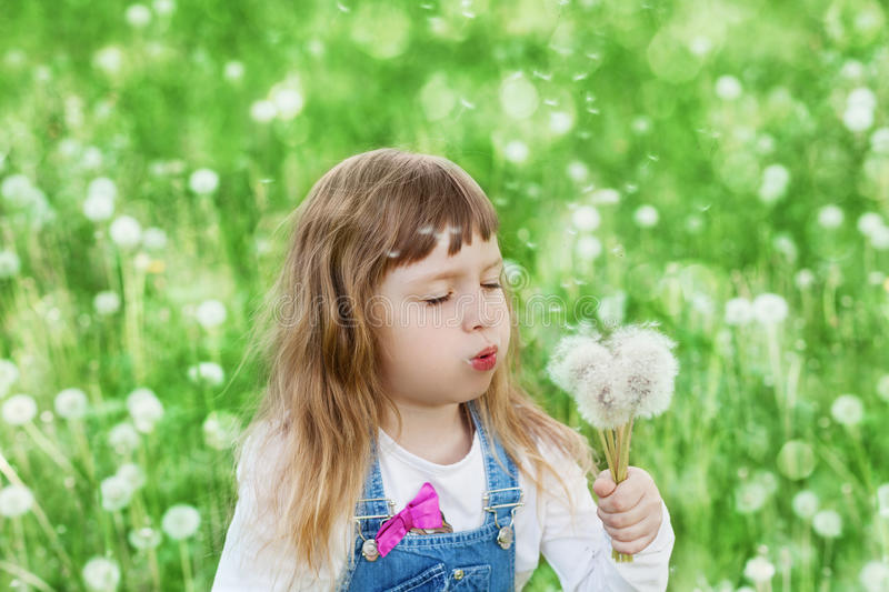 Cute little girl blowing dandelion on the flower meadow, happy childhood concept stock image
