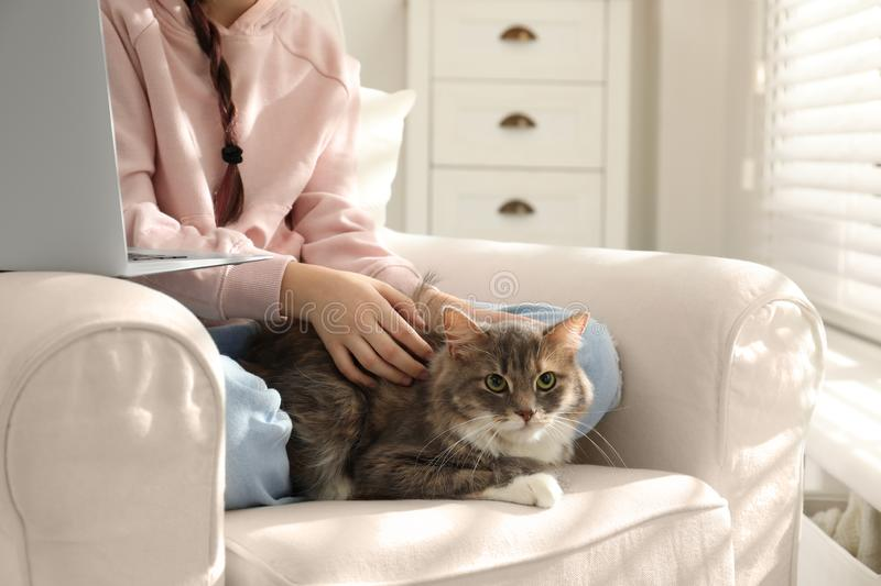 Cute little girl with cat in armchair at home. First pet royalty free stock photo