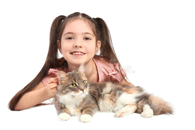Cute little girl with cat. On white background royalty free stock photo