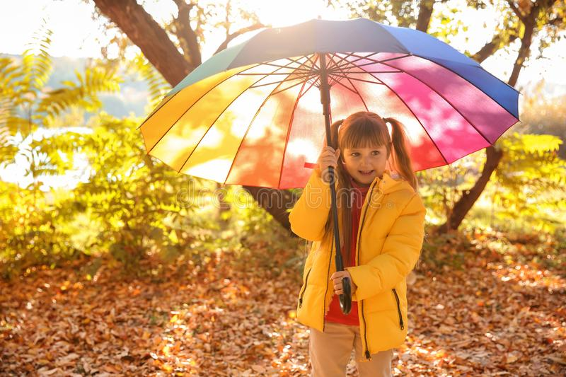 Cute little girl with colorful umbrella in autumn park stock photography