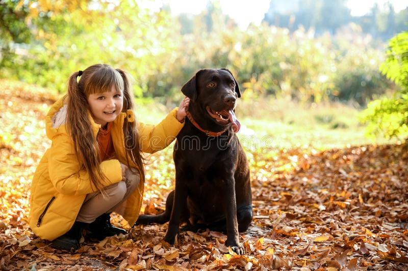 Cute little girl with dog in autumn park royalty free stock image