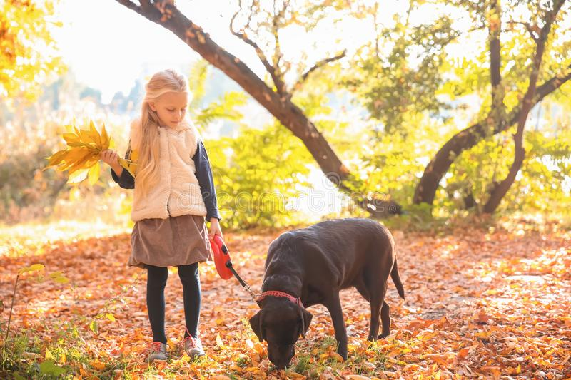 Cute little girl with dog in autumn park royalty free stock images
