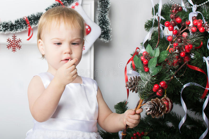 Cute little girl examines a red berries rowan near the Christm royalty free stock photo