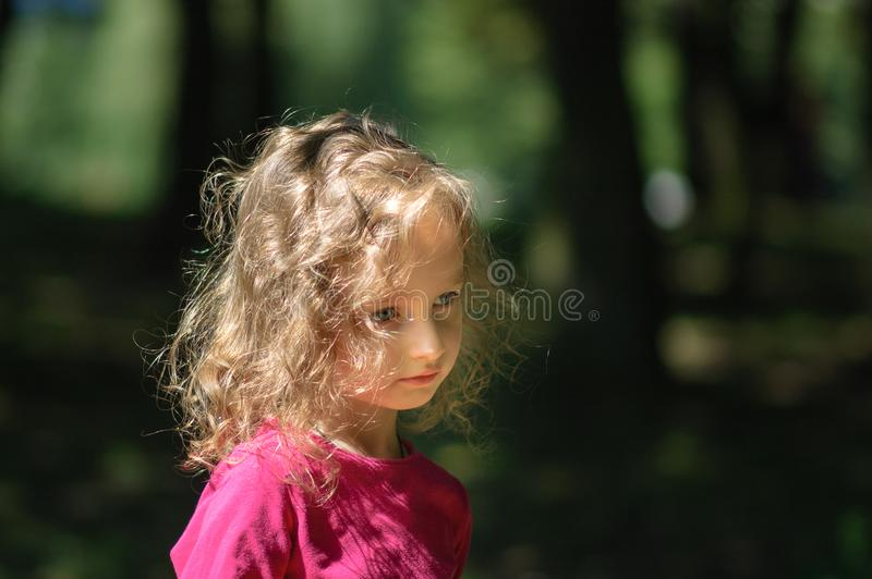Cute little girl in the forest, serious look, curly hair, sunny summer portrait royalty free stock photography