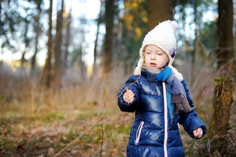 Cute little girl having fun during forest hike on beautiful spring day. Child exploring nature royalty free stock photo