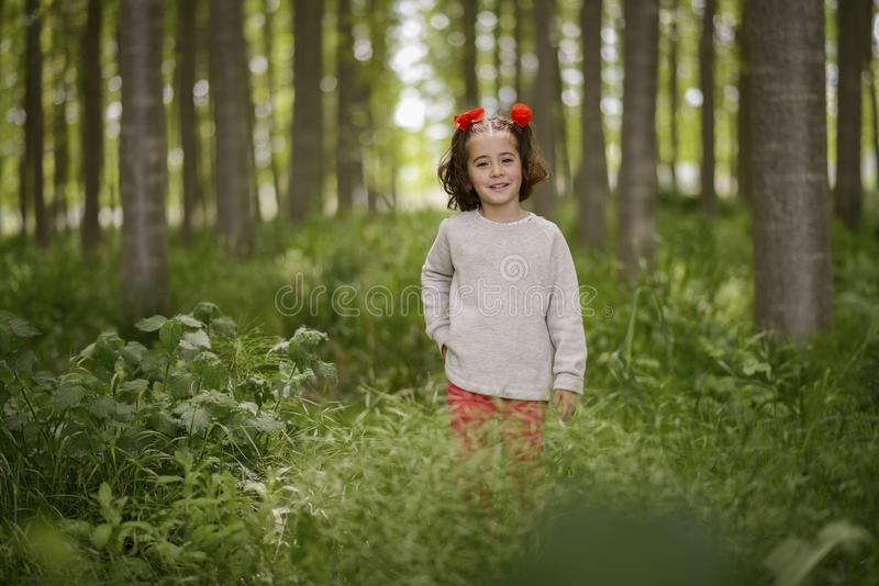 Cute little girl having fun in a poplar forest stock photo