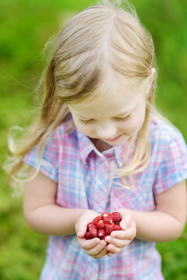 Cute little girl holding fresh wild strawberries picked at organic farm stock photography