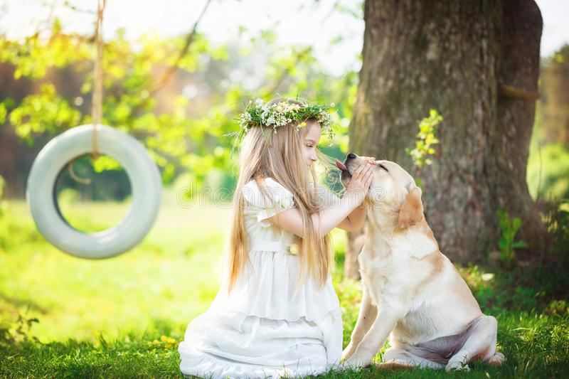 Cute little girl hugs a big dog in summer park royalty free stock image