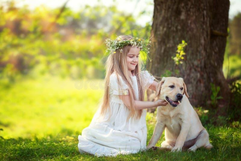 Cute little girl hugs a big dog in summer park stock photo