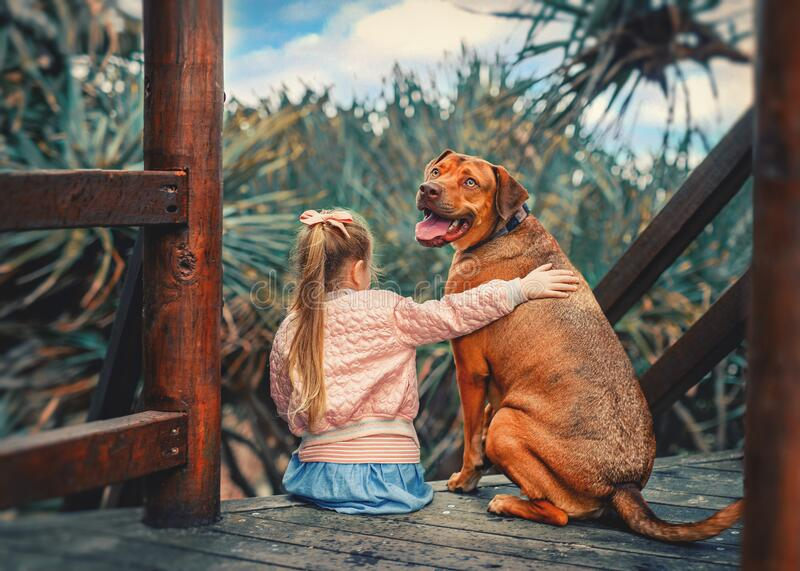 Cute little girl hugs a big red hungarian vizsla dog sitting together on the wooden stairs royalty free stock photos