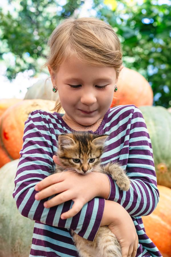 Cute little girl with kitten royalty free stock photo