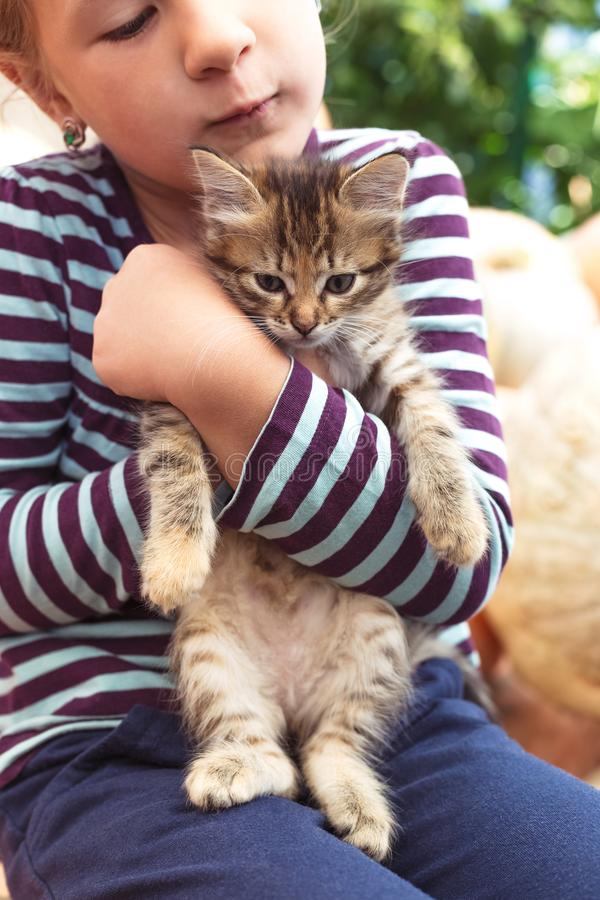 Cute little girl with kitten royalty free stock images